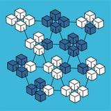 Vettore isometrico della rete della catena di blocco Fotografia Stock