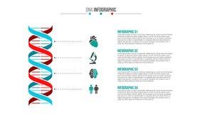 Vettore medico e sanità infographic Immagini Stock