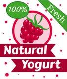 Vettore naturale del yogurt della bacca Fotografia Stock