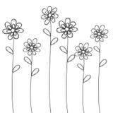 Vettore nero disegnato a mano dei fiori per fondo o la carta Fotografia Stock