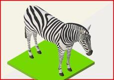 Vettore piano 3d isometrico della zebra Fotografia Stock Libera da Diritti