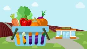 Vettore piano di campo di agricoltura del mercato organico di verdure del negozio Fotografia Stock Libera da Diritti