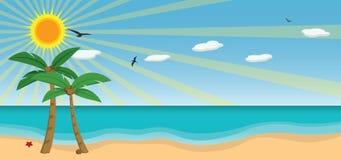 Vettore pieno di sole della spiaggia Fotografia Stock