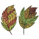 Vettore, piume, foglie, astrazione illustrazione vettoriale