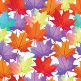 Vettore senza cuciture Autumn Leaves Pattern Estratto della foglia di acero Fotografia Stock
