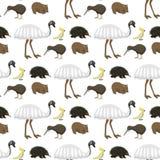 Vettore senza cuciture del fondo del modello della natura del fumetto degli animali selvatici dell'Australia dei caratteri del ma royalty illustrazione gratis