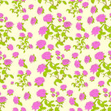 Vettore senza cuciture del modello del fiore della rosa di rosa Immagine Stock