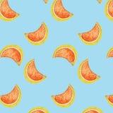 Vettore senza cuciture del modello dell'illustrazione arancio della frutta di estate Fotografie Stock