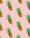 Vettore senza cuciture del modello dell'illustrazione dell'ananas di estate Fotografie Stock Libere da Diritti