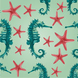 Vettore senza cuciture dell'ippocampo e delle stelle marine di struttura Fotografia Stock