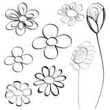 Vettore stabilito di scarabocchio dei fiori Immagine Stock