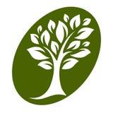 Vettore tree-22 Immagini Stock Libere da Diritti