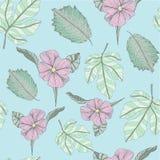 Vettore tropicale hawaiano del fondo del modello della stampa floreale nel malva blu illustrazione di stock