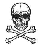 Vettore umano del cranio Immagini Stock Libere da Diritti