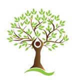Vettore umano di simbolo dell'albero sano di vita royalty illustrazione gratis