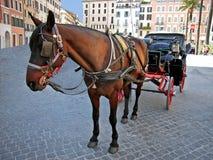 Vettura del cavallo a Roma Fotografie Stock Libere da Diritti