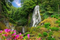 Veu da Noiva siklawa, Sao Miguel wyspa, Azores obraz royalty free