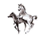 Veulen het oosterse inkt schilderen, sumi-e Royalty-vrije Stock Afbeeldingen