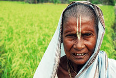 Veuve indienne Photographie stock