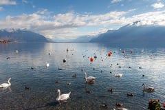 VEVEY, SVIZZERA - 29 OTTOBRE 2015: Vista panoramica di Vevey e del lago Lemano Immagine Stock