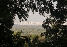 Vew цивилизации мегаполиса в листьях Стоковые Изображения
