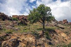 Vew agradable de la montaña Imagen de archivo libre de regalías
