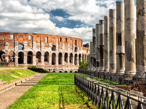 Vew of the Colosseum in Rome Stock Photography
