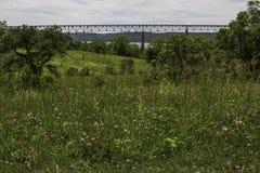 Vew der Brücke von der Wildflower-Wiese Stockfotografie