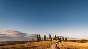 Vew of the hilly landscape in Tuscany. Royalty Free Stock Image
