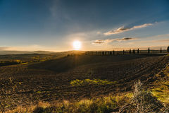Vew of the hilly landscape in Tuscany. Royalty Free Stock Photo