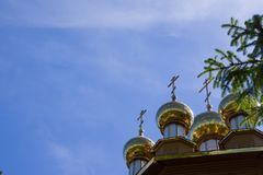 Vew on the wooden cathedral and sky from behind the fir branches. Belgorod, Russia Stock Image