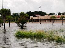 VF πλημμύρα λεωφόρων εξόδου εργοστασίων Στοκ Εικόνες