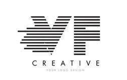 VF V F Zebra Letter Logo Design with Black and White Stripes Stock Image