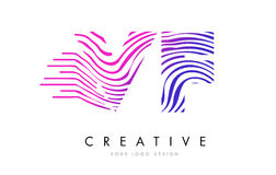 VF V F Zebra Lines Letter Logo Design with Magenta Colors Royalty Free Stock Photo