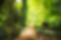 Väg att göra grön suddigt Arkivbilder