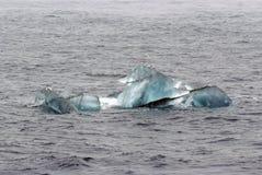 Vögel über kleinem Gletscher gefrieren bei Spitzbergen, Norwegen Lizenzfreies Stockbild