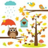 Vögel, Bäume und Eule Stockfotografie
