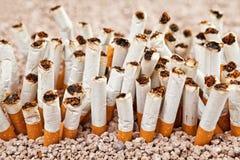 Vägg av cigaretter Fotografering för Bildbyråer