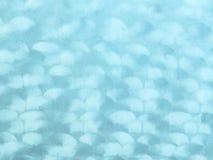 Vågmodell på brun tygmockaskinn Fotografering för Bildbyråer
