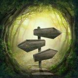 Vägmärke i den mörka skogen Royaltyfri Fotografi