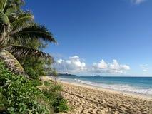 Vågor sveper på Sandy Waimanalo Beach Royaltyfria Foton