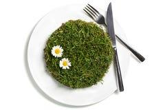 végétarien de nourriture de concept Images libres de droits