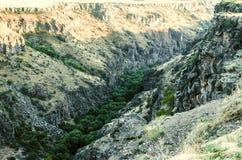 Végétation luxuriante avec des arbres en canyon le long de la rivière Kasakh de rivage Images libres de droits