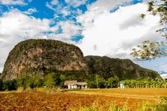 Viñales谷视图在古巴 与湖的虚幻的自然,山,树,野生生物 Gorgeus天空 免版税图库摄影