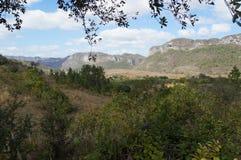 Viñales la valle verde Fotografia Stock