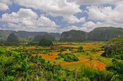 Viñales, Pinar del Rio, Куба Стоковое фото RF