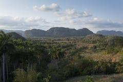 Viñaleslandschap Royalty-vrije Stock Afbeeldingen