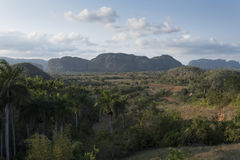Viñales landscape Royalty Free Stock Images