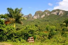 Viñales Valley, Cuba. Viñales Valley landscape with mogotes Royalty Free Stock Images