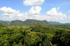 Viñales Valley from Los Jazmines viewpoint (Pinar del Rio, Cuba). General view of Viñales valley, a green composition of fields and mountains, known as mogotes Stock Photography